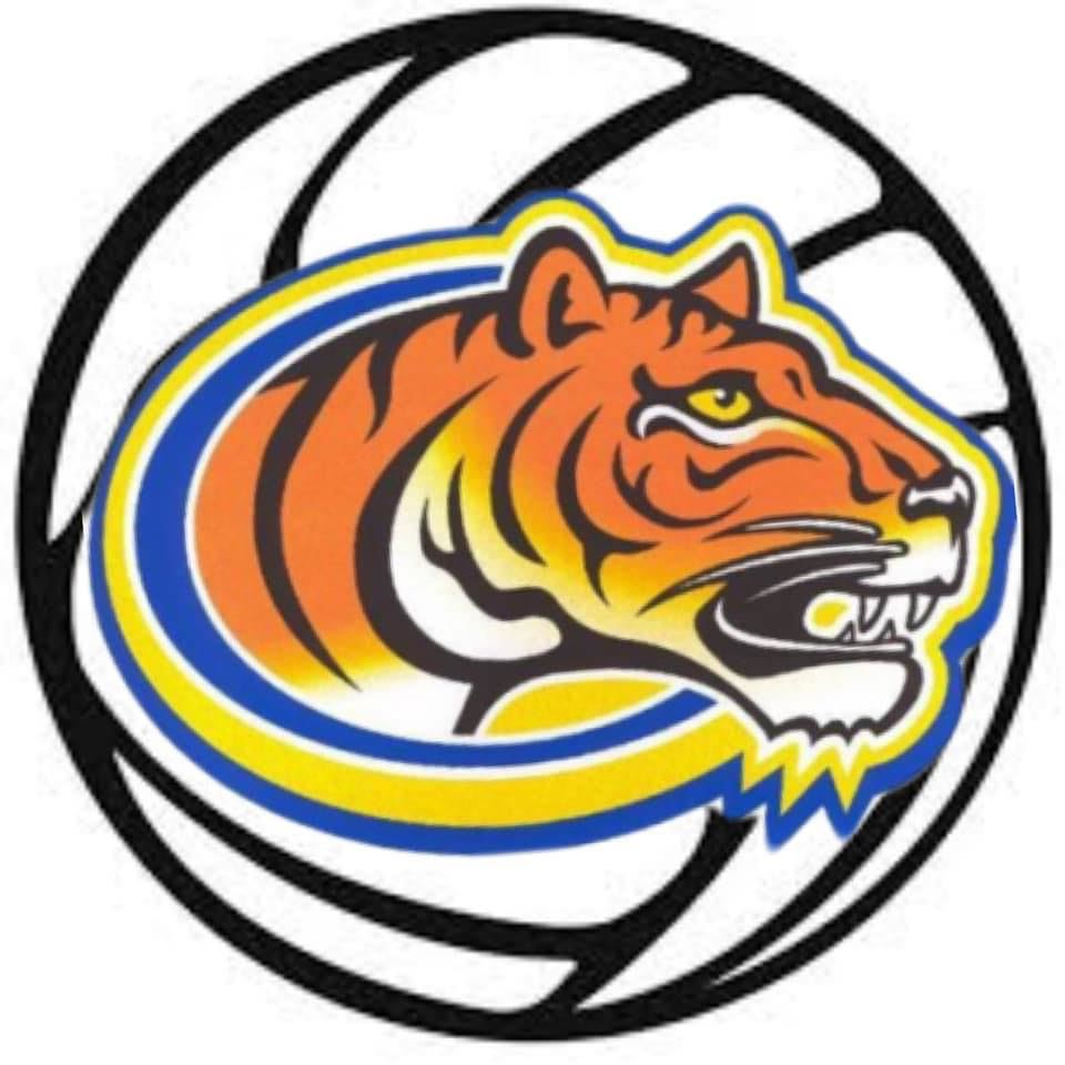 CHS Volleyball Logo